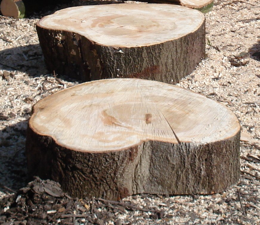 Wood carvings log slices stepping stones workwithnaturefo
